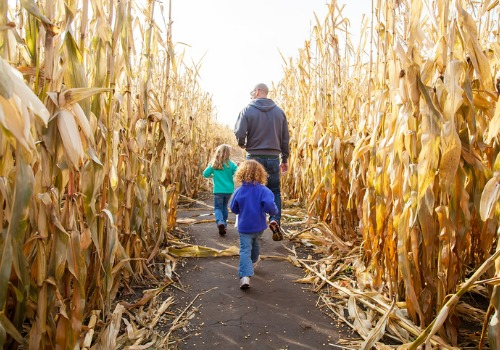 Family enjoying a corn maze and other Kids Activities near Peoria IL