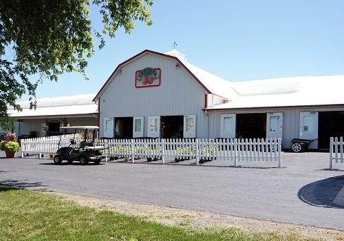 Tanner's Farm Market near Peoria IL